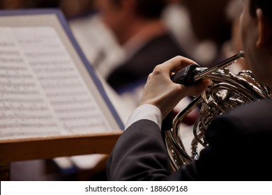 French horn in the hands of a musician closeup
