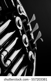 French horn portrait, black and white