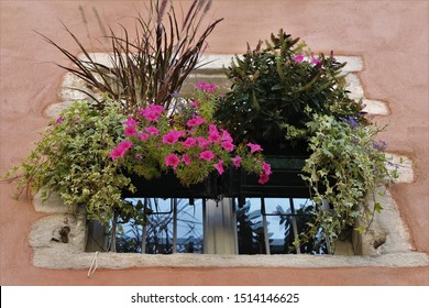 french house with flowers on a balcony