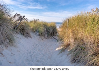 French landscape - Bretagne. Small path with dunes and grass.