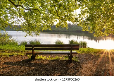 French landscape - Jura. Trees and park bench on the shore of the lake Bonlieu in the Jura mountains (France) at sunset.