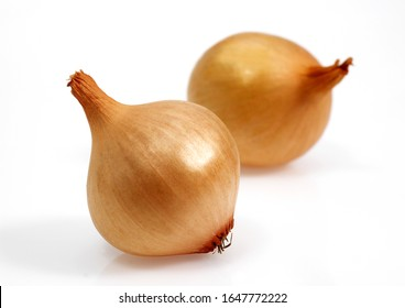 French Onion called Grelot, allium cepa, Vegetables against White Background