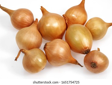 French Onions Called Grelot, allium cepa against White Background