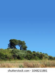 French outback and blue sky