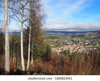 french village nested in a valley whith hilss as a background and birch trees as a foreground