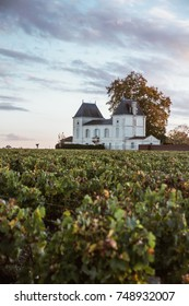 The french winery chateau isolated on a wine field with the lights of sunset