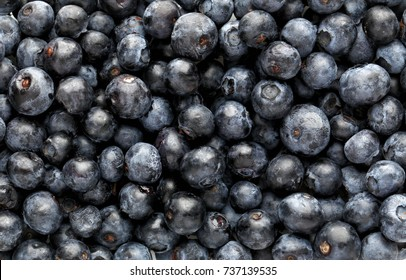 Fresh acai berries as background