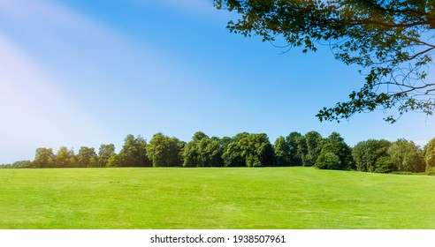 Fresh air and beautiful natural landscape of meadow with green tree  in the sunny day for summer background,Beauty landscape of grass field with forest trees and environment public park with sun rays