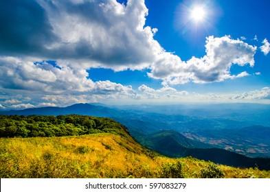 Fresh Air and Sunlight