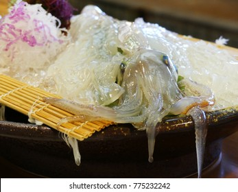 Fresh alive squid on dish in Karatsu Saga Japan