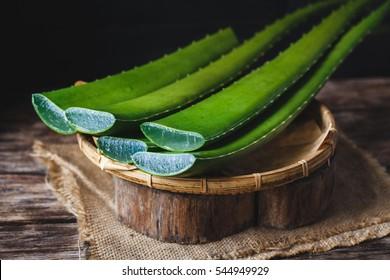 Fresh Aloe Vera