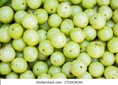 Fresh Amla fruit on local market. Gooseberry for sale in bazaar market. Indian gooseberry (Phyllanthus emblica), Malacca tree, or amla fruit. Emblic fruits for sale in the fruit market