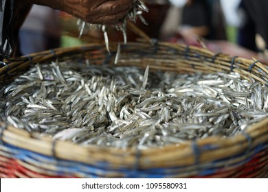 Fresh anchovies in a basket