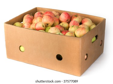 Fresh apples in carton container