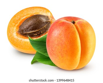 Fresh apricot fruits with leaf. Apricot isolated on white background. Cut fresh apricot fruits isolated on white background. Apricot Clipping Path.