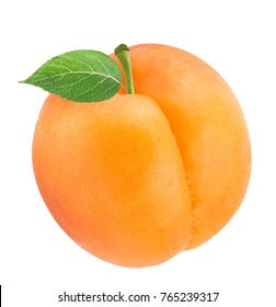 Fresh apricot isolated on white background with clipping path