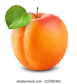Fresh apricot with leaf on white background. Clipping Path