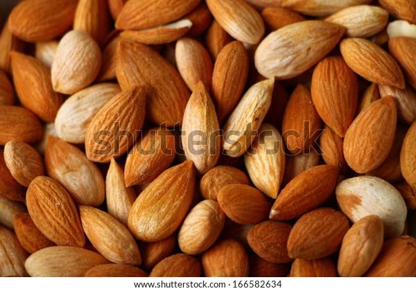Fresh apricot seeds