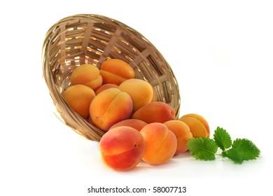 fresh apricots and lemon balm on white background