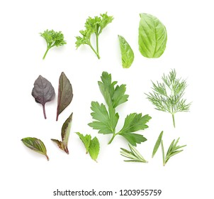 Fresh aromatic herbs on white background