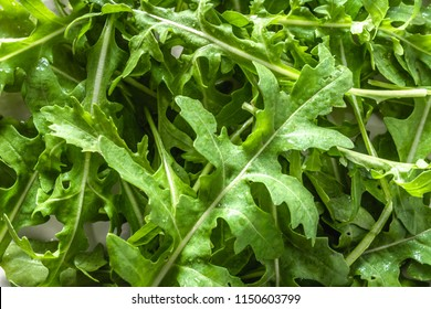 Fresh arugula leaves, background with green vegetables, organic diet and vegetarian diet concept