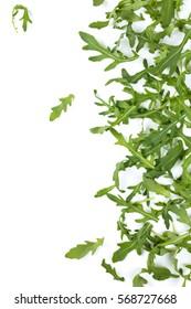 Fresh arugula leaves. Isolated on white background.