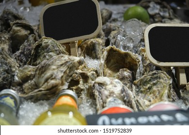 Fresh Atlantic oysters on store counter with lemon and lime close up in ice with price tags