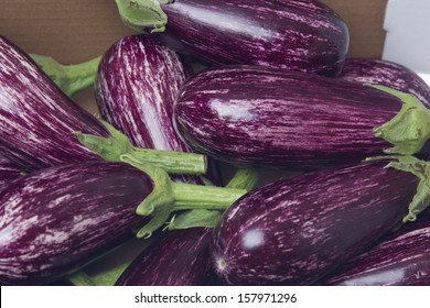 Fresh aubergine / egg-plant in a box isolated on white background