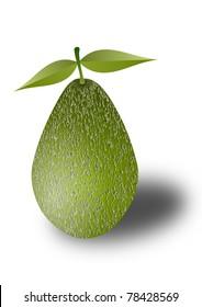 Fresh avocado fruit illustration