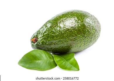 Fresh avocado fruit with leaves isolated on white background.