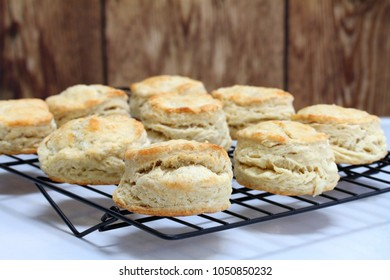 Fresh baked homemade buttermilk biscuits on a cooking rack.  Close up, with selective focus on front biscuit.  Copy space.