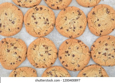 fresh baked homemade chocoate chip cookies on a baking sheet