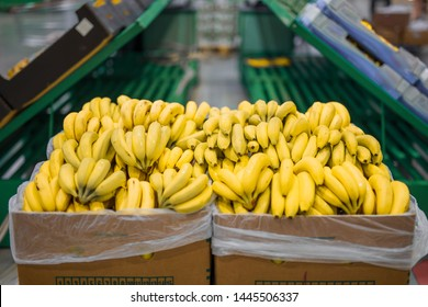 Fresh bananas in cardboard boxes on big market