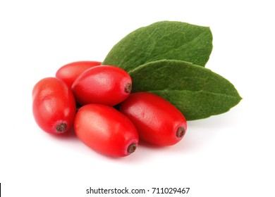 fresh barberry with leaves isolated on a white background