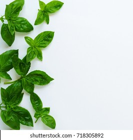 fresh basil leaves herb on white background. top view. copy space