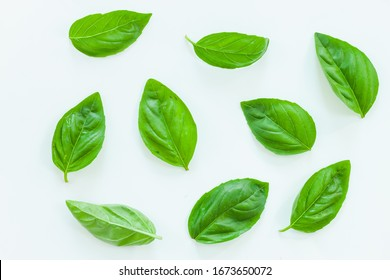 Fresh basil leaves on white background, top view.
