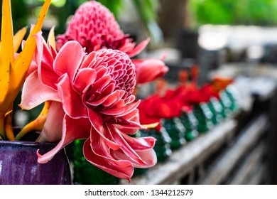 Fresh and beautiful red flowers with soft focus , there are showed in clear violet color vase on wooden porch