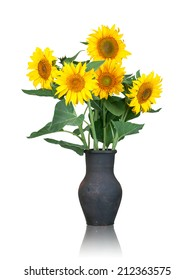 Fresh beautiful sunflowers in a an old black vase isolated on a white background