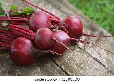 Fresh beetroot on rustic wooden background. Harvest vegetable cooking conception . Diet or vegetarian food concept .