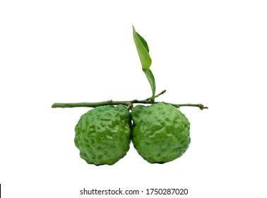 fresh bergamot fruit with leaf isolated on white background,with clipping path
