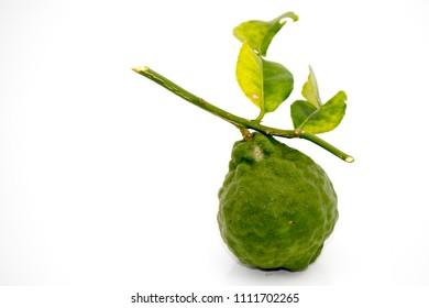 fresh bergamot fruit and bergamot leaves on white background.