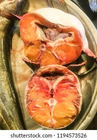 Fresh Big Fish Flesh ,Giant fish flesh