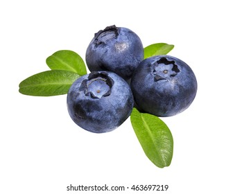 Fresh Bilberries blueberries, isolated on white background