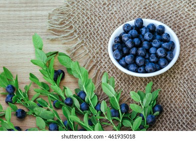 Fresh bilberry on wooden background. bilberry antioxidant. Concept for healthy eating and nutrition. Rustic style. Vitamins for breakfast.