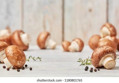 Fresh bio mushrooms