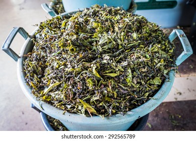 Fresh, a bit dried tea leaves in the basket ready for further processing