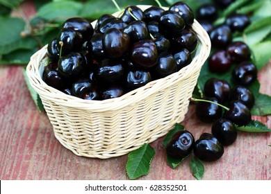 Fresh black cherries