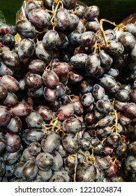 Fresh black grapes in the market,  their skin is dark purple nearly black,  oval shape,black seedless grapes contain significant amounts of vitamins A, C, and K. Flavonoids within the grape's skin.