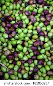 Fresh black and green olives sold at a market