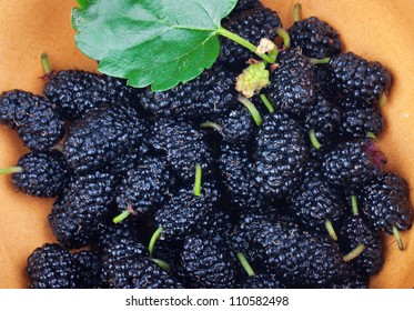 Fresh black mulberry with green leaves